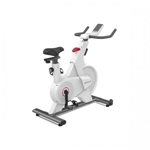 A3-S动感单车